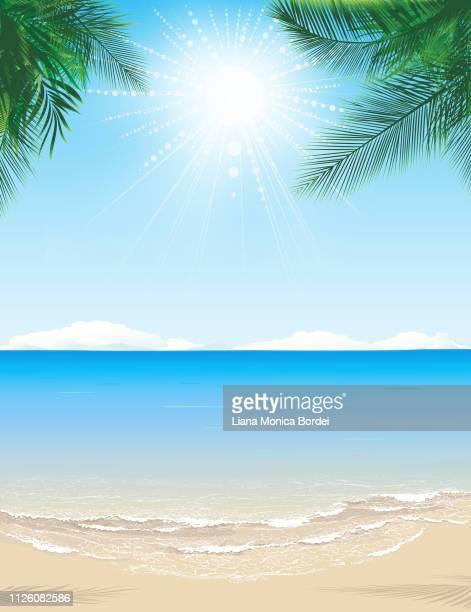 paradise beach - water's edge stock illustrations