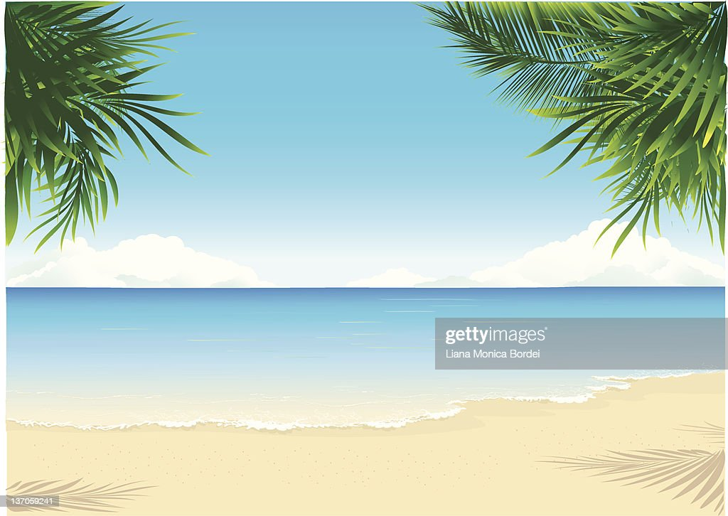 tropical beach vector art and graphics getty images rh gettyimages com beach vector background beach vector art