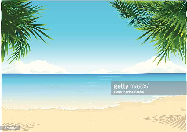 paradise beach - beach stock illustrations