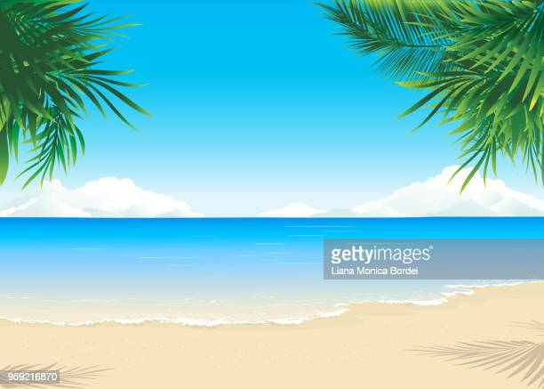 paradise beach - horizontal stock illustrations