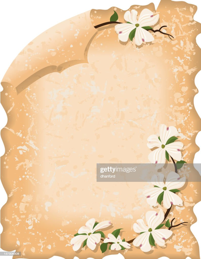 Parchment with Dogwood Blossoms