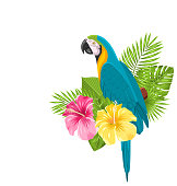 Parrot Ara, Colorful Exotic Flowers Blossom and Tropical Leaves
