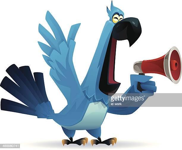 parrot holding megaphone - parrot stock illustrations, clip art, cartoons, & icons