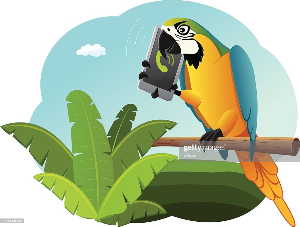 Parrot is talking on the smart phone