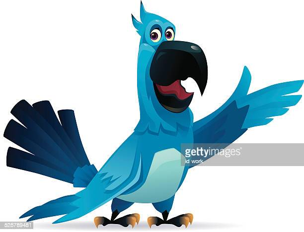 parrot présentation