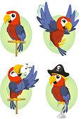 Parrot Scarlet Macaw Parakeet