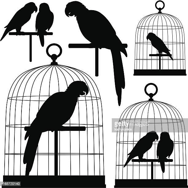 parrots in silhouette - cage stock illustrations, clip art, cartoons, & icons