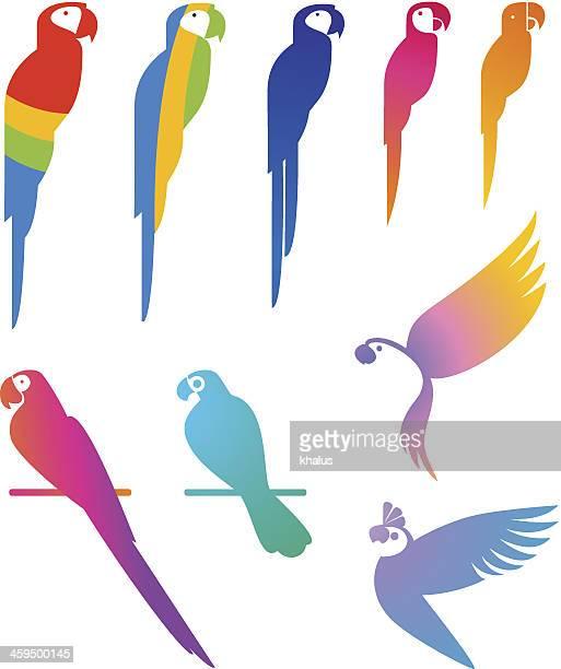 parrots set - parrot stock illustrations, clip art, cartoons, & icons