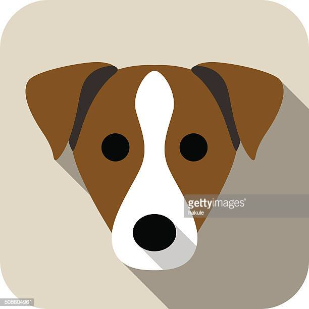 parson russell terrier face flat icon, dog series
