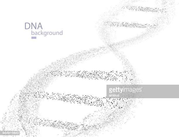 DNA Particles