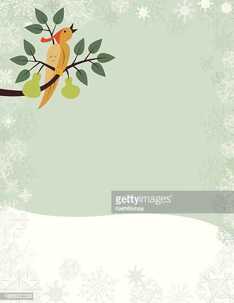Partridge in a Pear Tree - Christmas Holiday Background