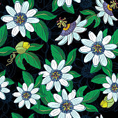 Passionflower passiflora,passionfruit on a white background.Floral seamless pattern