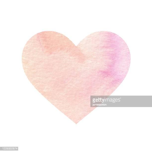 illustrazioni stock, clip art, cartoni animati e icone di tendenza di forma del cuore acquerello dipinto di corallo pastello su sfondo bianco - rosa pallido