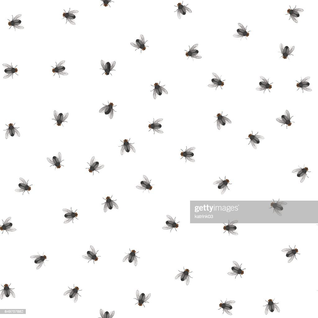 pattern of creeping flies
