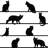 pattern with cats silhouettes
