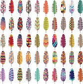 Patterned Colorful Feathers Vector