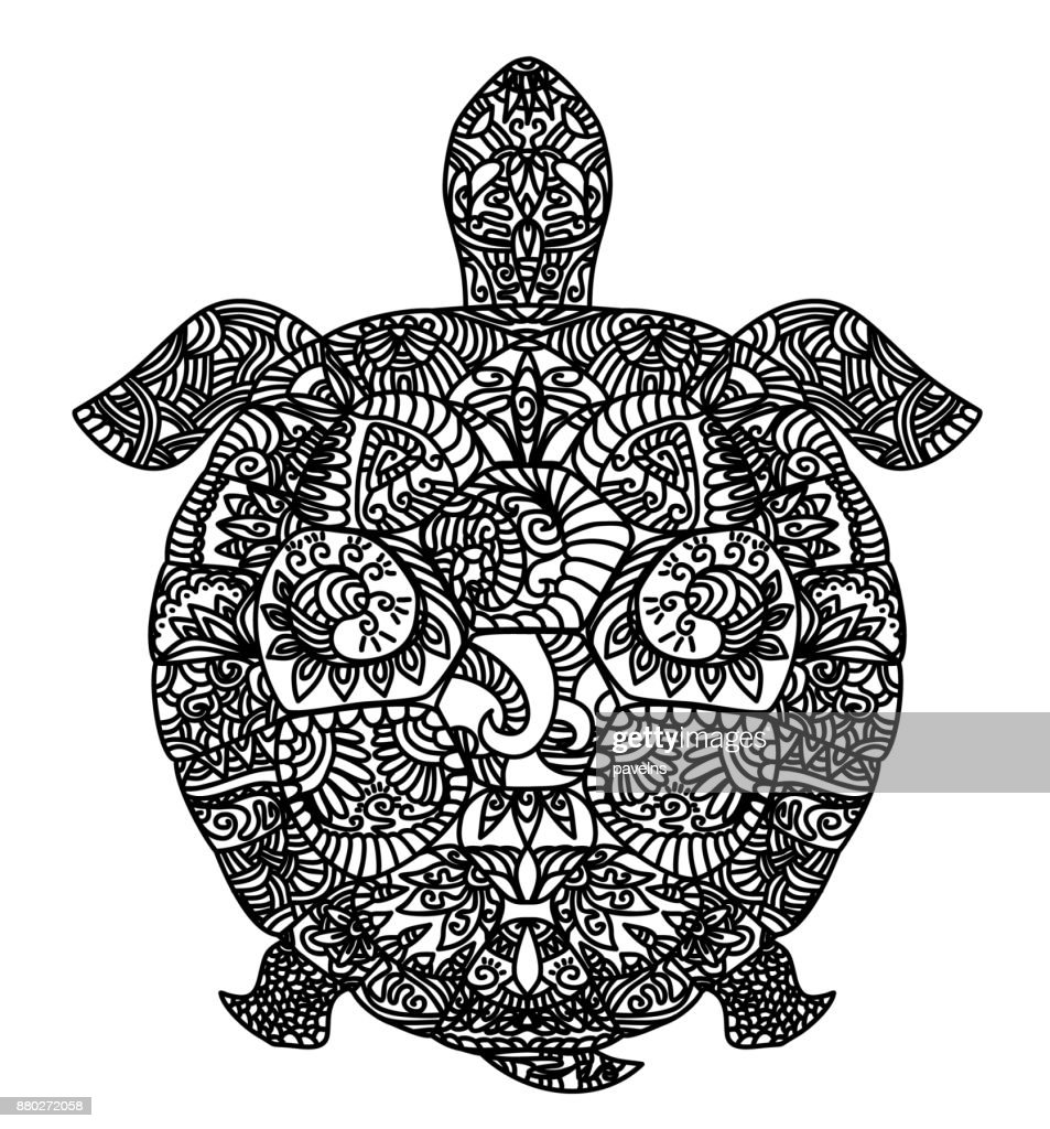 Patterned turtle on white