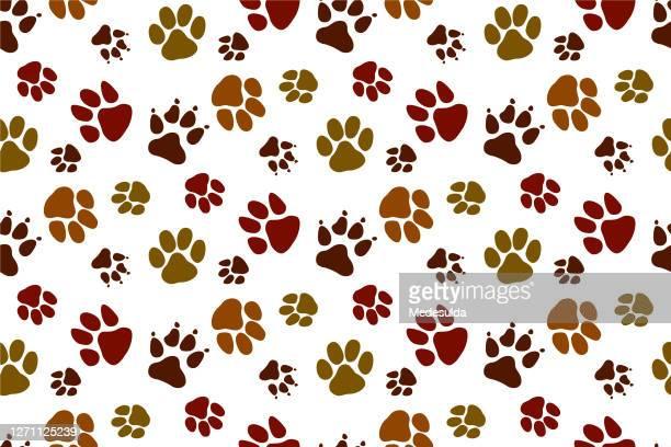 paw pattern - bear tracks stock illustrations