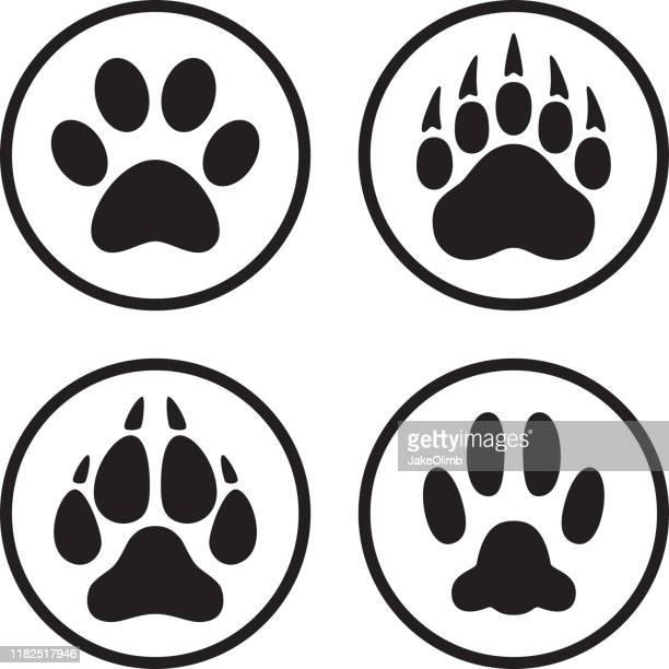 ilustraciones, imágenes clip art, dibujos animados e iconos de stock de paw print icono flat line art set - parte del cuerpo animal