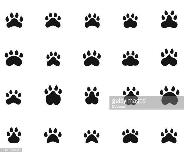 paw print icons - toe stock illustrations, clip art, cartoons, & icons