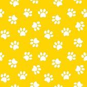 paw print seamless pattern