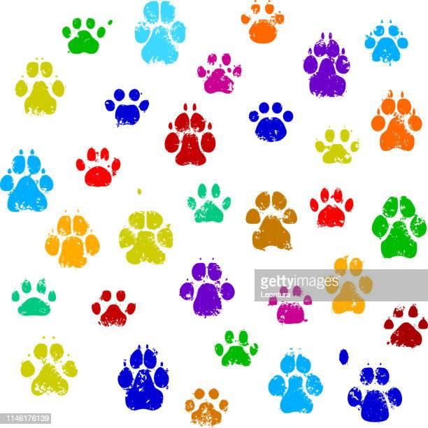 ilustrações de stock, clip art, desenhos animados e ícones de paw prints - pegadadepatadeanimal