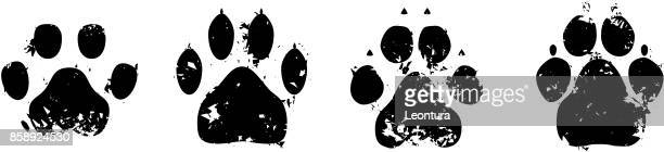 paws - animal track stock illustrations, clip art, cartoons, & icons