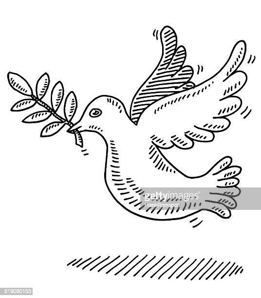 Peace Symbol Dove Branch Drawing