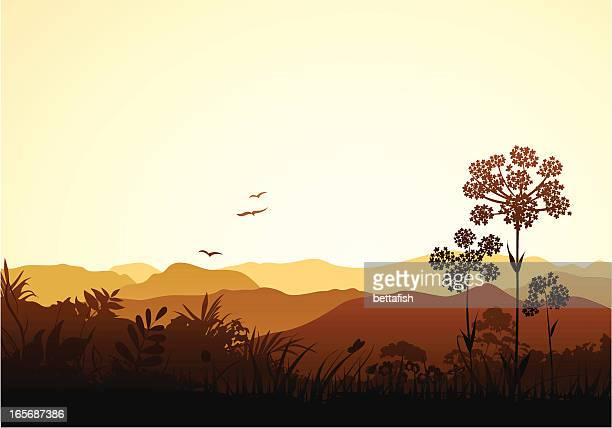 peaceful valley - outback stock illustrations