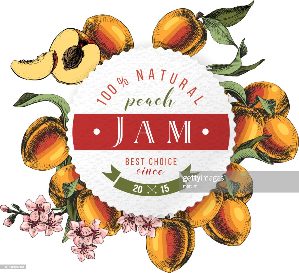 Peach jam paper emblem over hand drawn peach branches