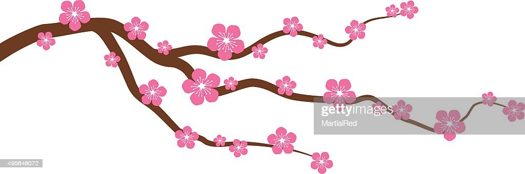 Peach or cherry blossom tree branch with flowers vector graphic