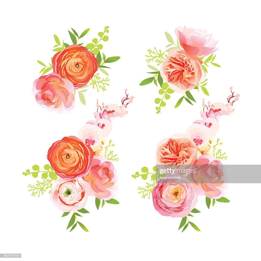 Peachy roses, ranunculus and  herbs bouquets vector design elements