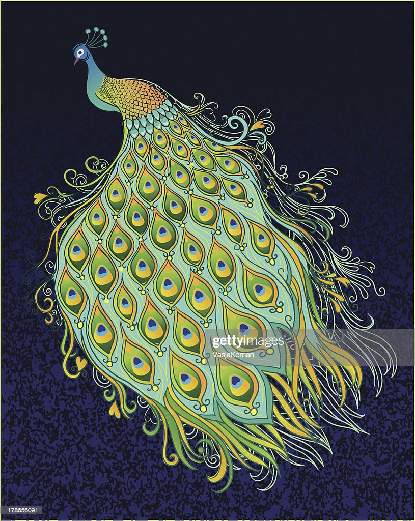 Peacock on Dark Textured Background