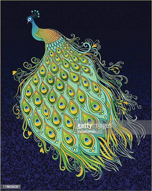 Peacock on Dark Textured Background