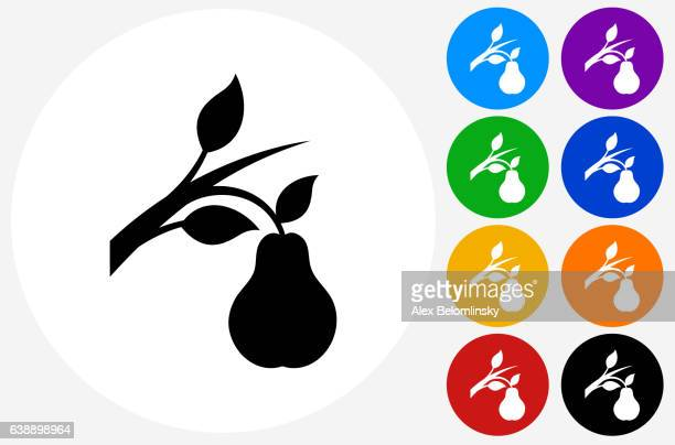 ilustraciones, imágenes clip art, dibujos animados e iconos de stock de pear branch icon on flat color circle buttons - pera