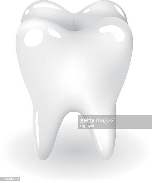 ilustraciones, imágenes clip art, dibujos animados e iconos de stock de blanco dientes - dientes humanos