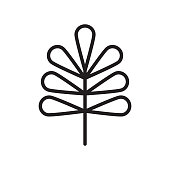 Pecan leaf icon vector sign and symbol isolated on white background, Pecan leaf logo concept