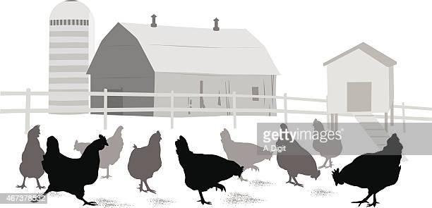 peckingorder - enclosure stock illustrations