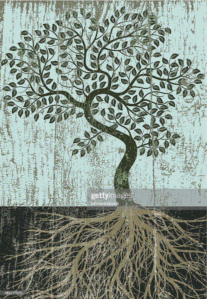Peeling paint bent tree : stock illustration