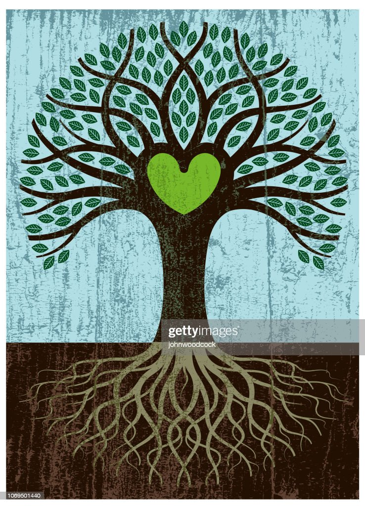 Peeling paint big root heart tree : stock illustration
