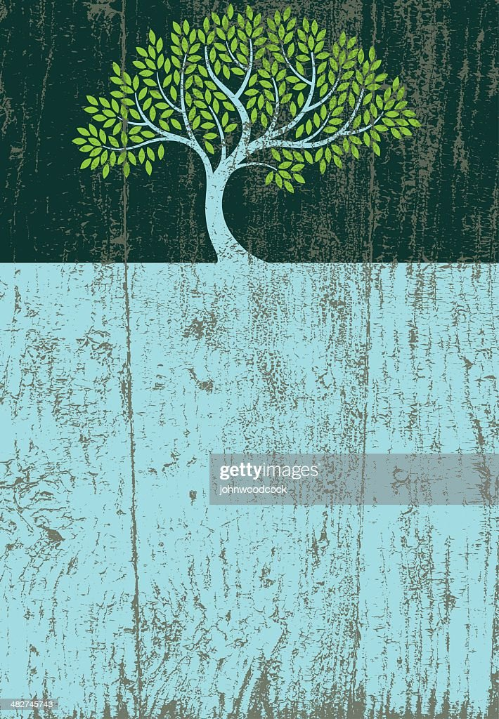 Peeling paint elegant tree