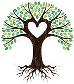 Peeling paint heart tree vector