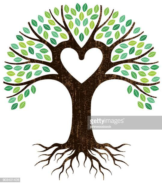 peeling paint heart tree vector - tree stock illustrations