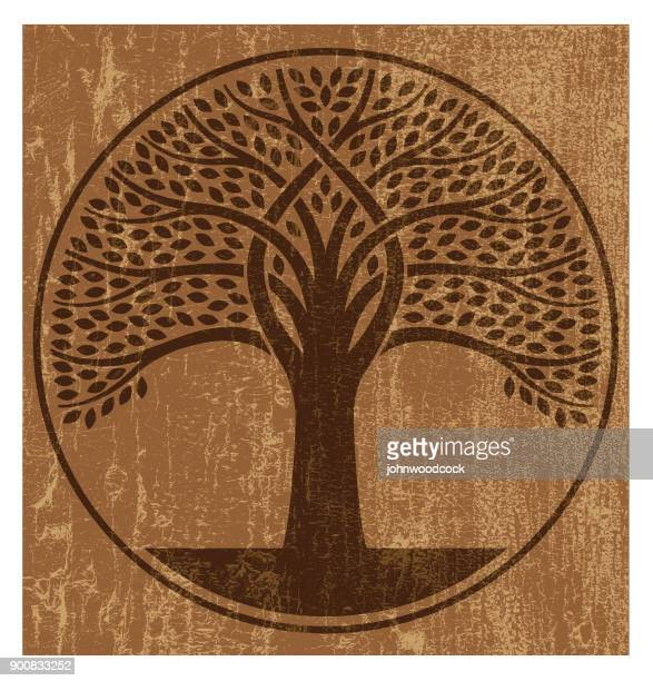 Peeling paint intertwined tree