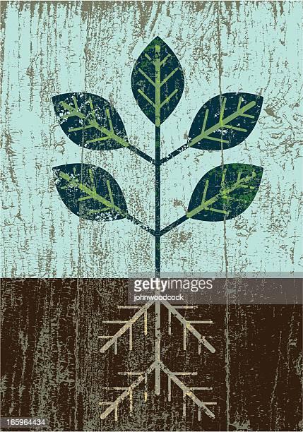 ピーリングペイント包まれた芽が表す希望