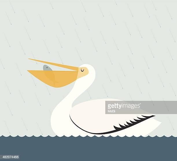 pelican eating a fish - pelican stock illustrations
