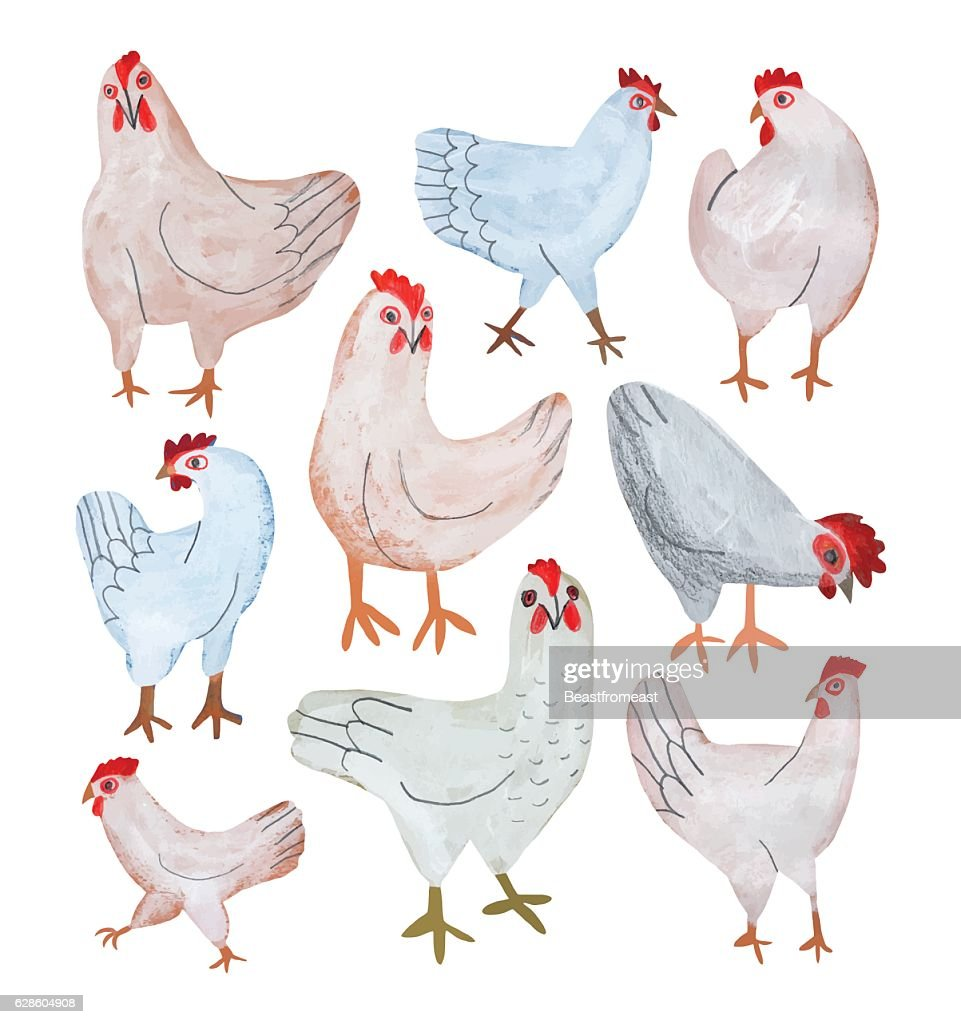 Pencil drawing set of chickens