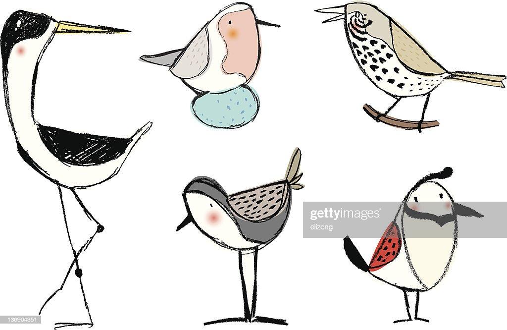 pencil sketch birds