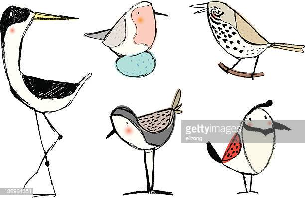 ilustraciones, imágenes clip art, dibujos animados e iconos de stock de lápiz boceto pájaros - animal egg
