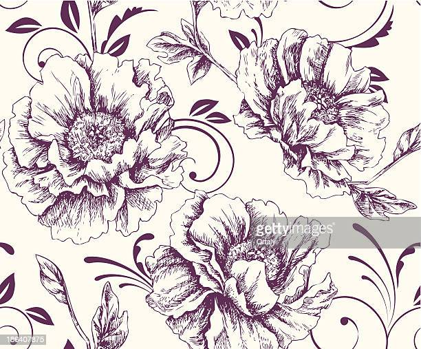 Peonies pattern - Illustration